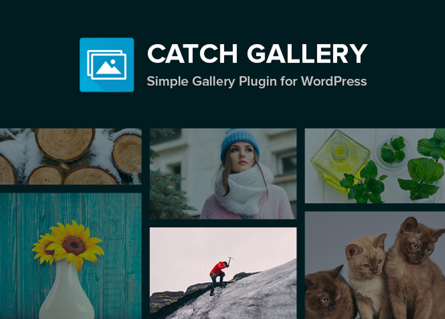 Catch Gallery - a free Gallery WordPress Plugin